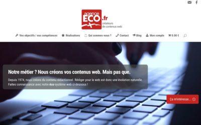 L'Agence ECO : création du site internet… et du business plan associé